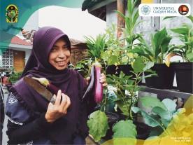 Mengenal Wisata Kampung Sayur